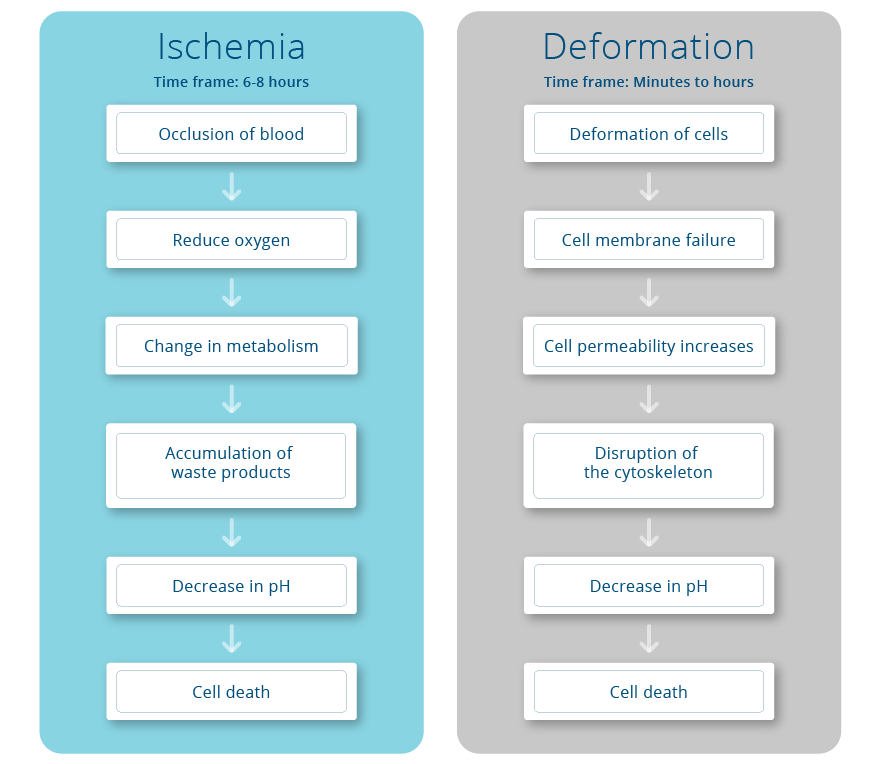 Ischemia and Deformation
