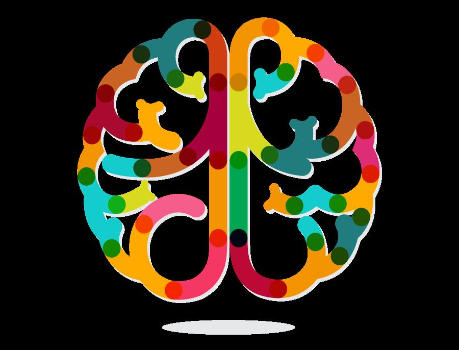 Developmental-Brain