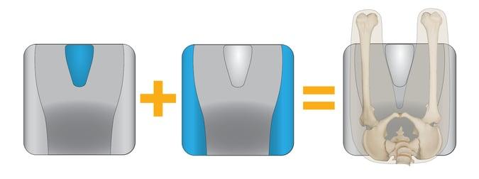 Abductor_Equation