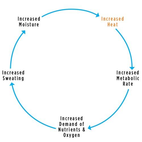 MicroClimate-Diagram.png