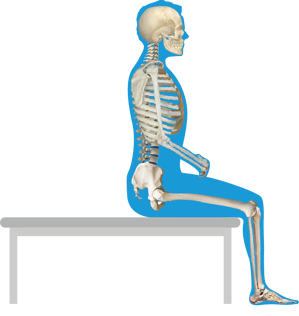 Seated Mat Eval Position.png