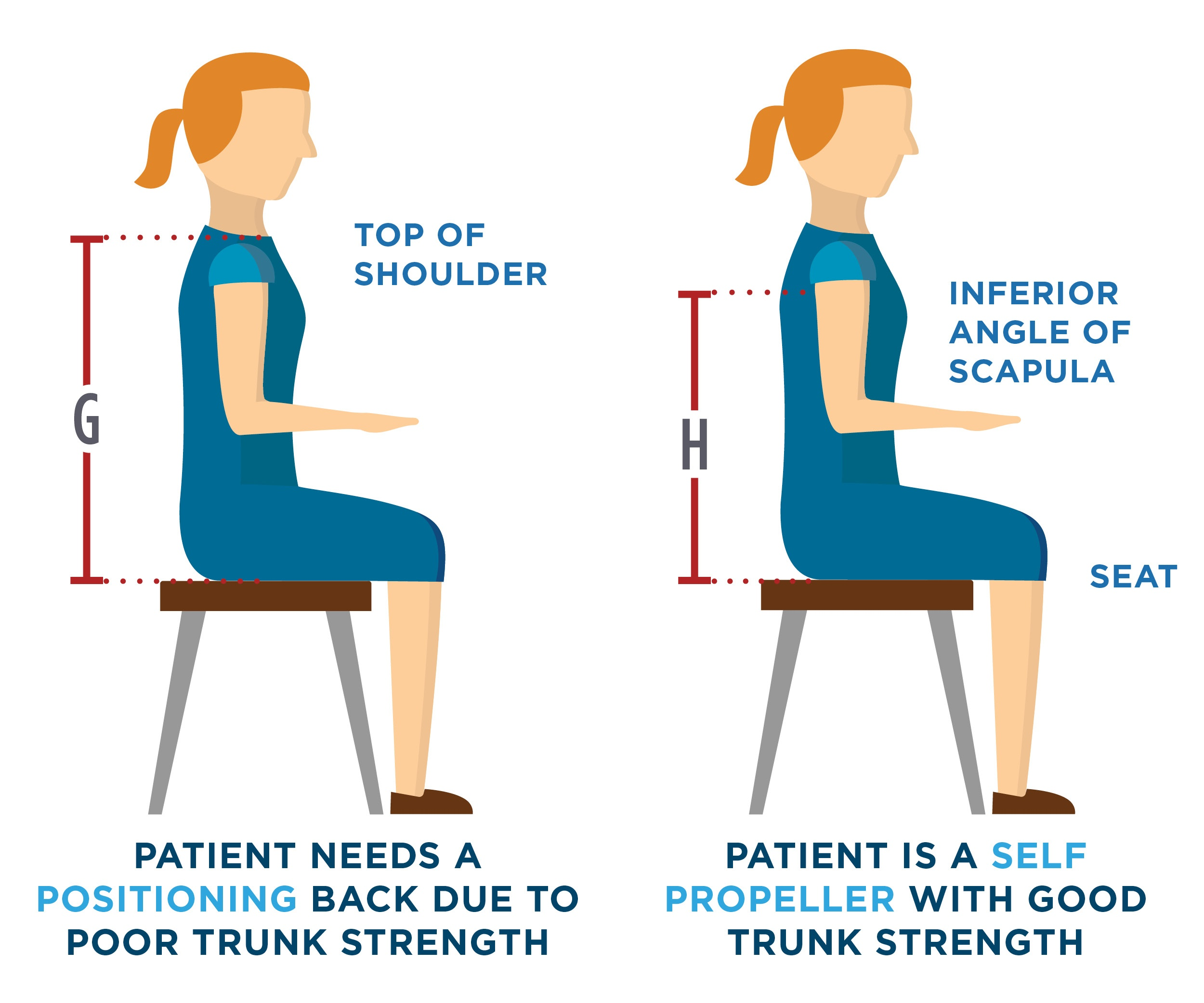 Wheelchair_Back_Support_Measuring_Guide - Back Support Height