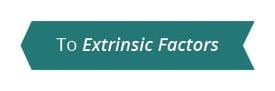 ExtrinsicFactors2