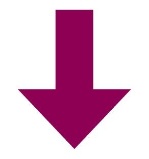 Purple Arrow 7