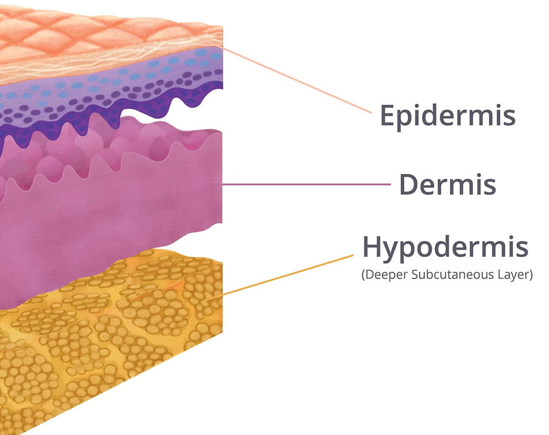 Skin_Layers_in_seating_systems